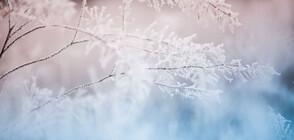 ЗИМЕН ВТОРНИК: Ще падне ли първият сняг в равнините?