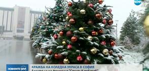 Откраднаха част от коледната украса в София