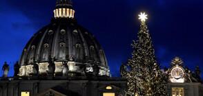 Грейнаха светлините на коледното дърво в Рим (СНИМКИ)