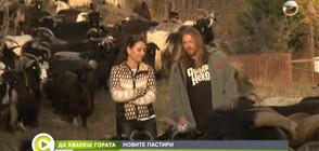 """""""Да хванеш гората"""": Да напуснеш Пловдив заради село Долен и стадо от 240 кози (ВИДЕО)"""