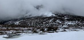 Ледници в Нова Зеландия почервеняха (СНИМКИ)