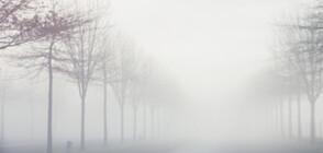 Мръсен въздух и жълт код за мъгли събудиха страната (ОБЗОР)