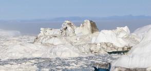 Гренландия губи ледовете си 7 пъти по-бързо, отколкото през 90-те