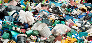 Тонове незаконен боклук засечени на пристанище Варна