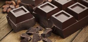 """""""Активни потребители"""": Само две марки на българския пазар наистина са шоколад (ВИДЕО)"""