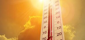 ДЕКЕМВРИЙСКА ПРОЛЕТ: Къде беше отчетена най-високата температура?