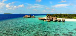 """""""Без багаж"""" търсят луксозни приключения на Малдивите"""