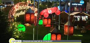 ПРАЗНИЧНА МАГИЯ В СТРАСБУРГ: Столицата на Коледа