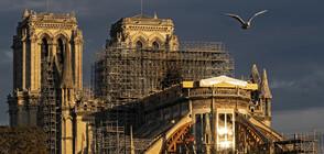 """Реставрацията на катедралата """"Нотр Дам"""" навлиза в рискована фаза"""