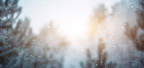 Необичайна снежна покривка в Калифорния (ВИДЕО)