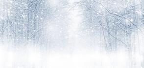 Снежни бури затвориха пътища в Румъния (ВИДЕО)