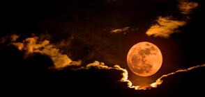 """""""Вълча"""" Луна изгрява в петък"""