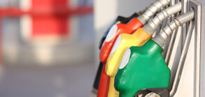Bulgaria to create 100 state-run petrol stations