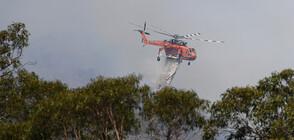Пожарите в Австралия – между фалшивите новини и истината (ВИДЕО)