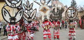 "Фестивалът ""Сурова"" в Брезник (СНИМКИ)"