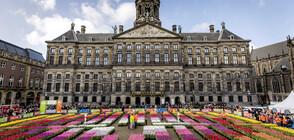 Амстердам откри сезона на лалетата с килим от цветя (ГАЛЕРИЯ)