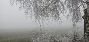 ДЪЛГОСРОЧНА ПРОГНОЗА: Какво ще е времето до края на зимата?