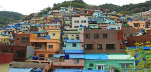 Кое е най-цветното селище в Южна Корея?