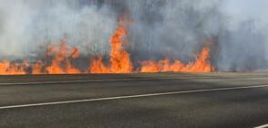 Пожар затвори временно пътя към Гърция при Кресна (ВИДЕО+СНИМКИ)