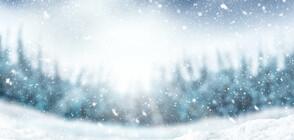 76 см сняг в Канада, армията помага на хората (ВИДЕО)