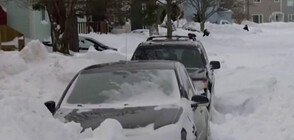 Войници чистят сняг в Канада (ВИДЕО)