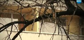 """СЛЕД РАЗСЛЕДВАНЕ НА NOVA: Уволниха две болногледачки от """"Дома на ужасите"""" в Пловдив"""
