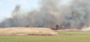 Пожар горя в защитената местност Орловото блато (ВИДЕО+СНИМКИ)