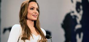 Анджелина Джоли ще продуцира детско шоу