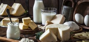Цената и твърдостта - сред начините да разберем качествено ли е сиренето (ВИДЕО)