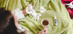 Общо 674 училища в страната днес са в грипна ваканция