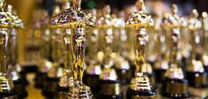 """Филмовите звезди на традиционен обяд преди """"Оскарите"""""""