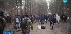 БЕЖАНСКА КРИЗА: Група от около 400 мигранти се събраха в района на Суботица