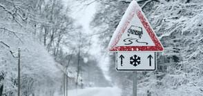 """Първоаприлски сняг натрупа на прохода """"Петрохан"""""""
