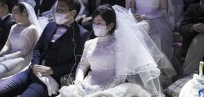 """""""Любов по време на... коронавирус"""": Близо 3 000 двойки се венчаха на масова сватба (СНИМКИ)"""