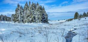 СЛЕД НЕТИПИЧНО ТОПЛОТО ВРЕМЕ: Идват дъжд и сняг (ВИДЕО)