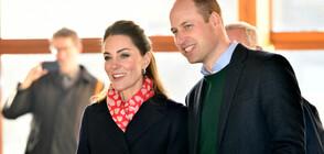 Принц Уилям и Кейт Мидълтън отиват да помагат в опожарена Австралия