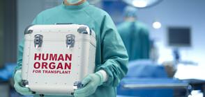 """Първа бъбречна трансплантация за годината в УМБАЛ """"Александровска"""""""