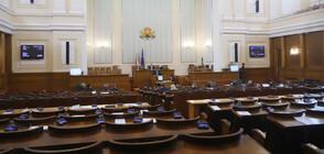 """""""Тренд"""": Пет партии влизат в следващия парламент"""