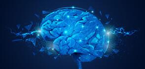 УНИКАЛНО: Жена свири на цигулка, докато ѝ правят мозъчна операция (ВИДЕО+СНИМКИ)