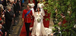 Най-уникалните сватбени рокли на всички времена (ГАЛЕРИЯ)