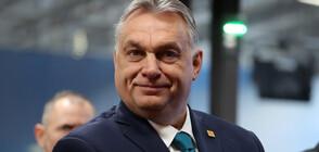 Хиляди унгарци на протест срещу поредната кампания на Виктор Орбан