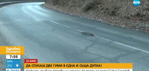 Кола спука предна и задна гума в една и съща дупка (ВИДЕО)