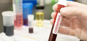 Взимат мерки срещу коронавируса в страната