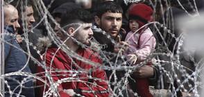 Заловиха бежанци в хладилно ремарке на камион край Видин