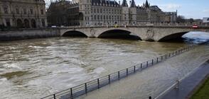 Река Сена преля в Париж (ВИДЕО+СНИМКИ)