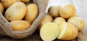 Невероятните ползи на сока от картофи