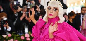 Върнаха откраднатите кучета на Лейди Гага (СНИМКИ)