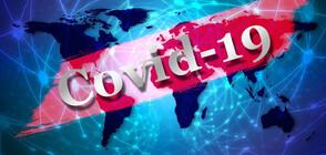 216 new coronavirus cases in Bulgaria