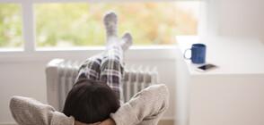 Сън и чай - ключовете към добрия имунитет по време на карантина