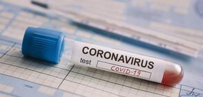 Заразените с коронавирус у нас са 293, регистрираха 17 нови случая (ВИДЕО)